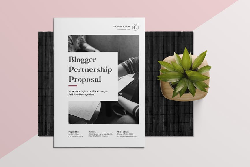 Blogger Proposal Template7